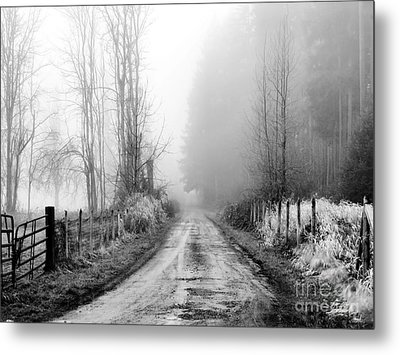 Into The Unknown Metal Print by Rory Sagner