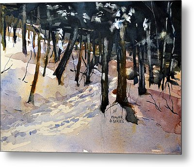 Into The Woods Metal Print by Spencer Meagher