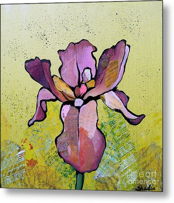 Iris II Metal Print by Shadia Derbyshire