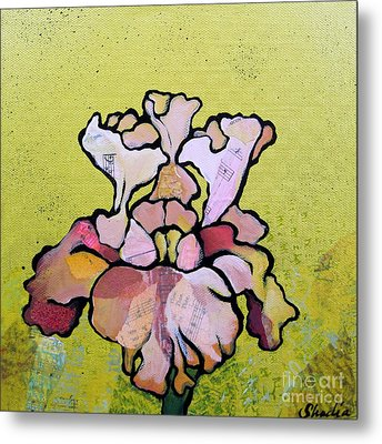 Iris Iv Metal Print by Shadia Derbyshire