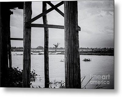Irrawaddy River Tree Metal Print by Dean Harte