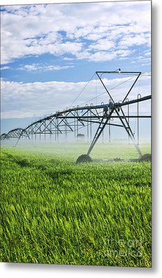 Irrigation Equipment On Farm Field Metal Print by Elena Elisseeva