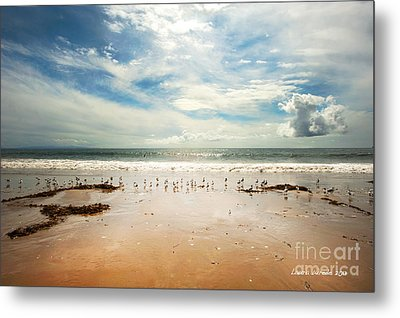 It Was A Sunny Day At The Beach From The Book My Ocean Metal Print by Artist and Photographer Laura Wrede