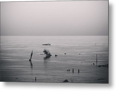 It Was Lonely There Metal Print by Laurie Search