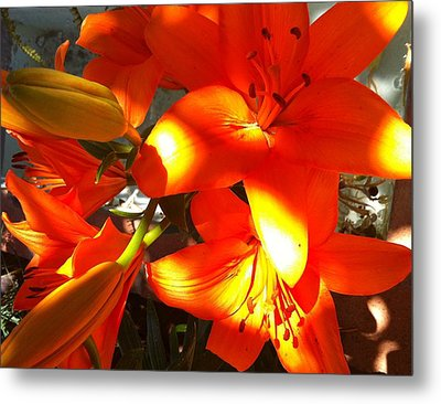 It's A Beautiful Day Lily Metal Print by Stephanie Aarons