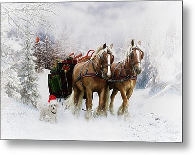 A Christmas Wish Metal Print by Shanina Conway