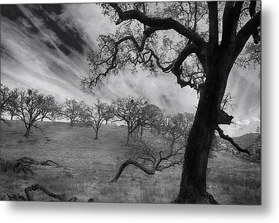 It's My Dreams You Take Metal Print by Laurie Search