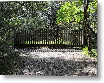 Jack London Grave Site 5d21982 Metal Print by Wingsdomain Art and Photography