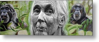 Jane Goodall Metal Print by Simon Kregar