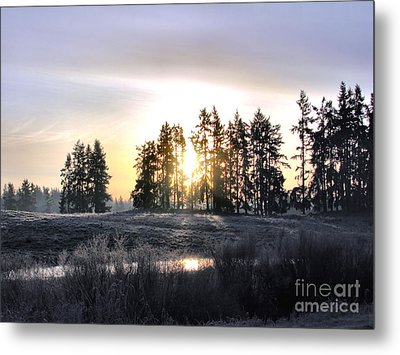 January Morning Metal Print by Rory Sagner