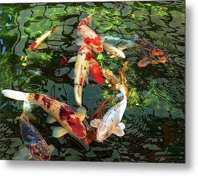 Japanese Koi Fish Pond Metal Print by Jennie Marie Schell