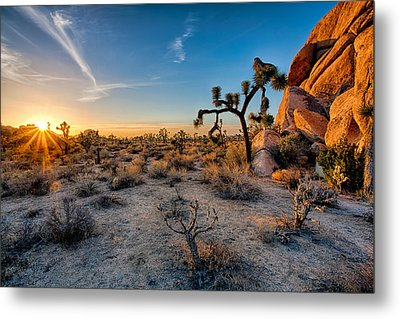Joshua's Sunset Metal Print by Peter Tellone