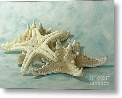 Journey To The Sea Starfish Metal Print by Inspired Nature Photography Fine Art Photography