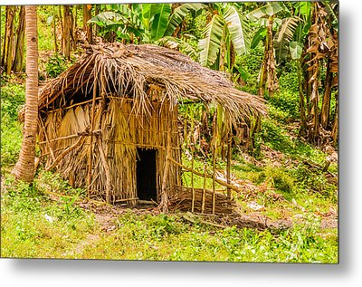 Jungle Hut In A Tropical Rainforest Metal Print by Colin Utz