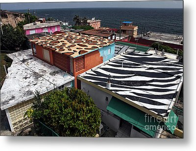 Jungle Roofs Metal Print by John Rizzuto