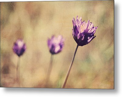 Just A Breath Away Metal Print by Laurie Search