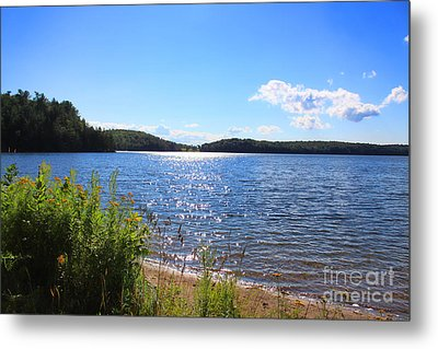 Just A Summer Day  Metal Print by Cathy  Beharriell