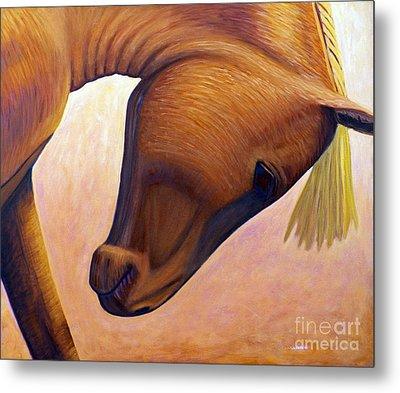 Just Plain Horse Sense Metal Print by Brian  Commerford