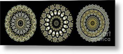 Kaleidoscope Ernst Haeckl Sea Life Series Steampunk Feel Triptyc Metal Print by Amy Cicconi