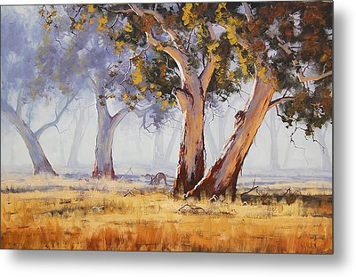 Kangaroo Grazing Metal Print by Graham Gercken