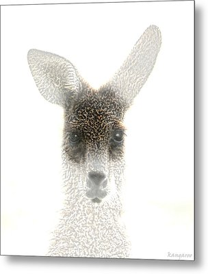 Kangaroo Metal Print by Holly Kempe