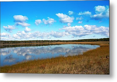 Kettle Pond Metal Print by Brooke Ryan