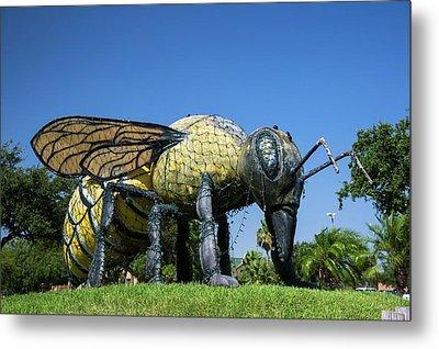 Killer Bee Model Metal Print by Jim West