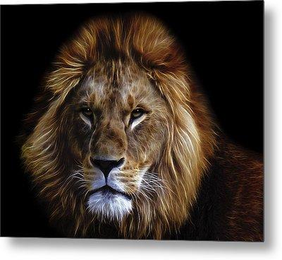 King Of Africa Metal Print by Daniel Hagerman