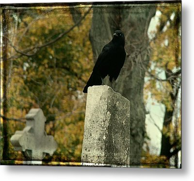 King Of The Graveyard Metal Print by Gothicrow Images