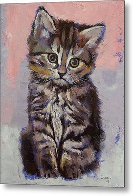 Kitten Metal Print by Michael Creese
