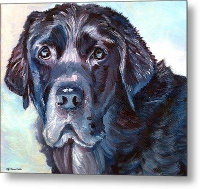 Labrador Retriever Metal Print by Lyn Cook