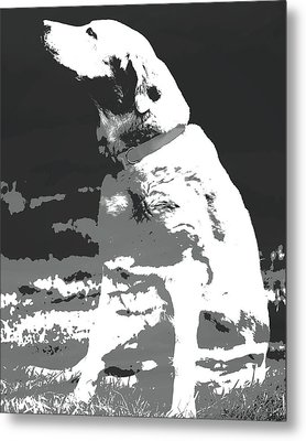 Labrador Smell The Air Metal Print by Terry DeLuco