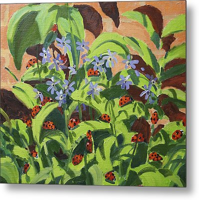 Ladybirds Metal Print by Andrew Macara
