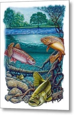 Lake Fish Metal Print by Larry Taugher