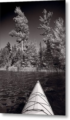 Lake Kayaking Bw Metal Print by Steve Gadomski