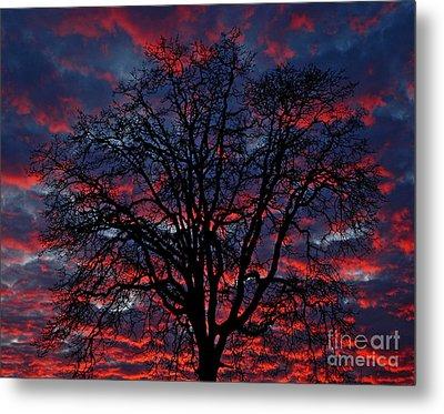 Lake Oswego Sunset Metal Print by Nick  Boren