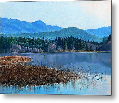 Lake Padden - View Near Gosset Bench Metal Print by Nick Payne