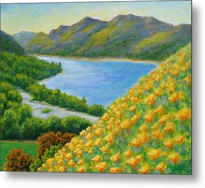 Lake Sonoma Poppies Metal Print by David LeRoy Walker