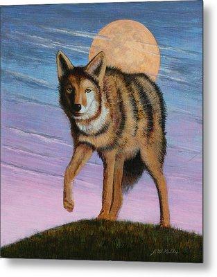 Lame Coyote Metal Print by J W Kelly