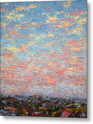 Land And Sky 3 Metal Print by James W Johnson