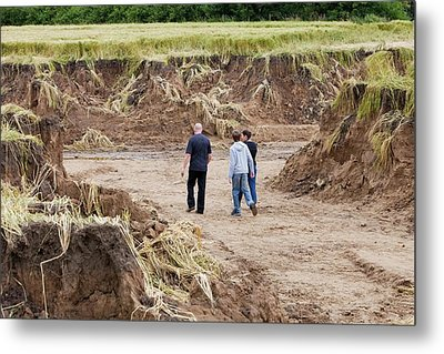 Land Eroded By Flooding Metal Print by Ashley Cooper