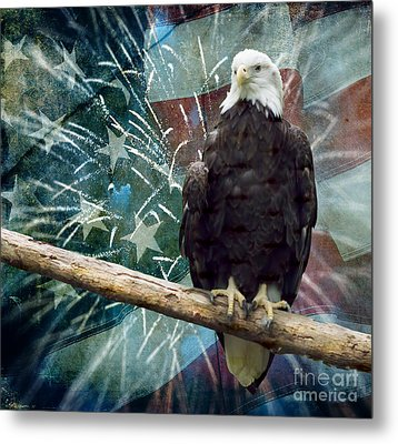 Land Of The Free Metal Print by Terry Weaver