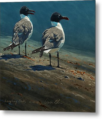 Laughing Gulls Metal Print by Aaron Blaise