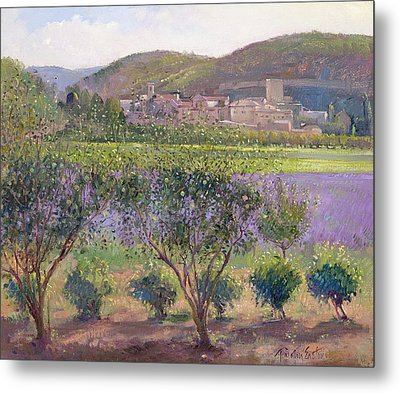 Lavender Seen Through Quince Trees Metal Print by Timothy  Easton