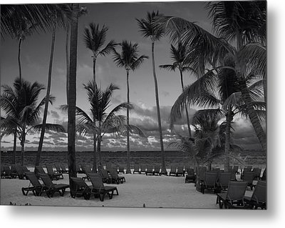 Lay Back And Relax Metal Print by Laurie Search