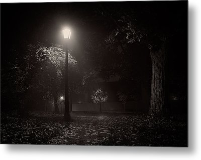 Leaf Covered Path At Night Metal Print by Chris Bordeleau