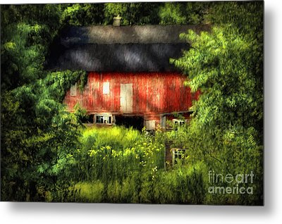 Leave Our Farms Metal Print by Lois Bryan