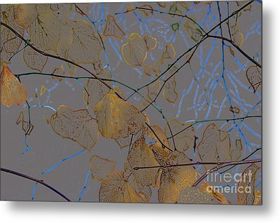 Leaves Metal Print by Carol Lynch