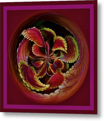 Leaves With Border Orb Metal Print by Paulette Thomas