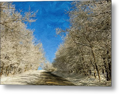 Leaving Winter Behind Metal Print by Lois Bryan